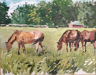 Horses By County Rd. 36